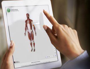 Interactive 3D Content